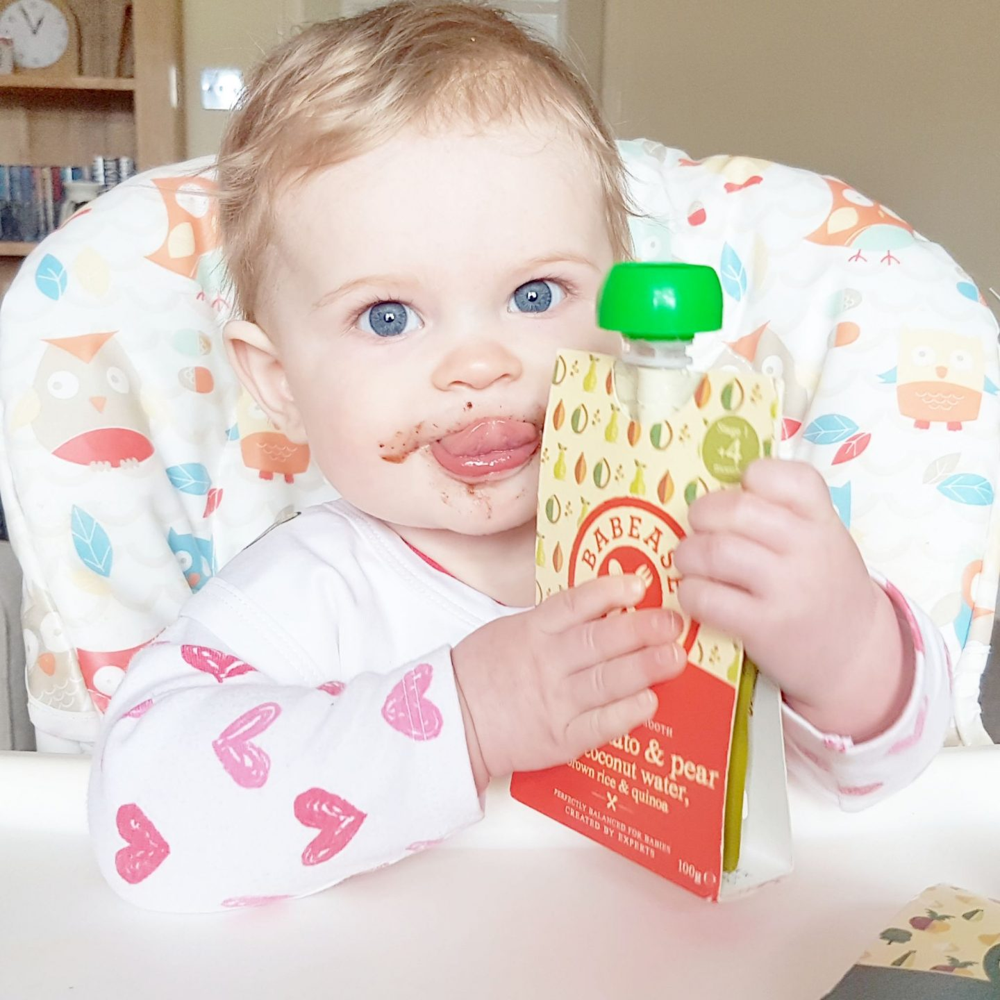 Babease Baby Plan | Food for Babies, Not Baby Food