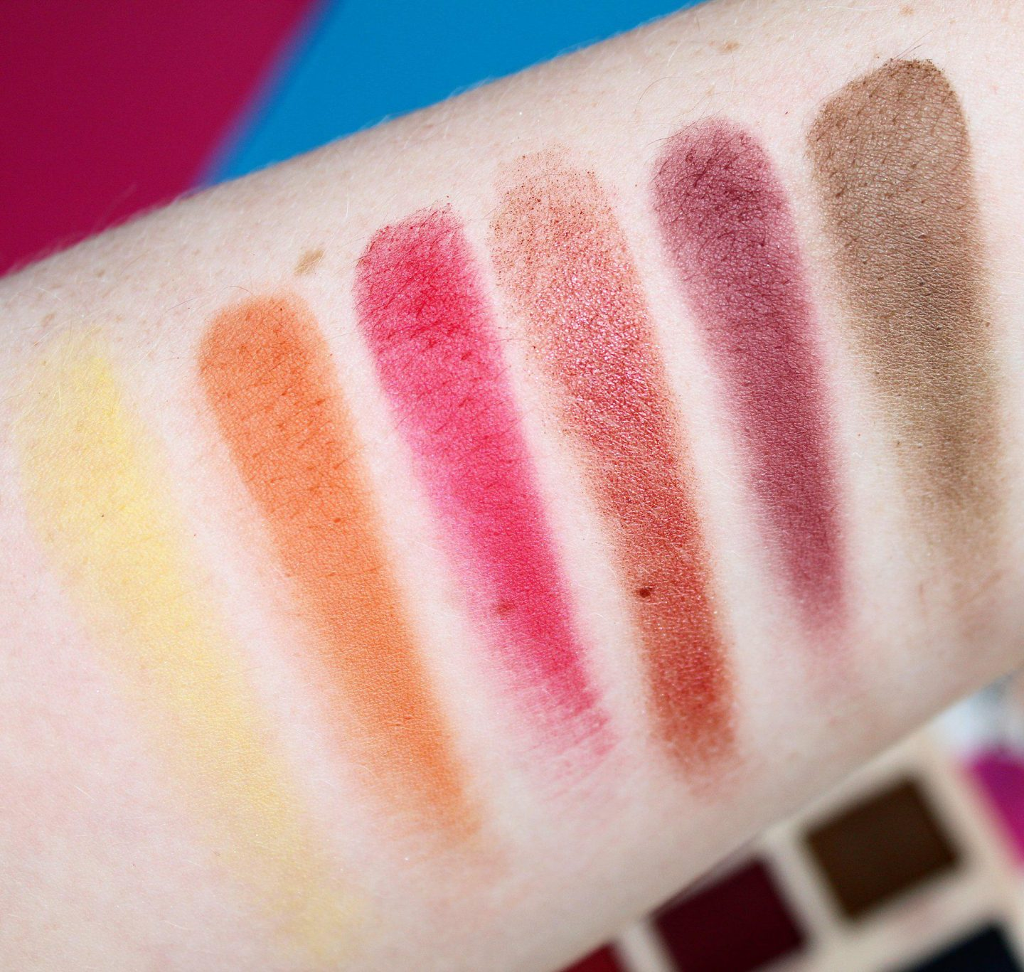 Revolution X Soph Extra Spice Ultra Eyeshadow Palette | Review & Swatches