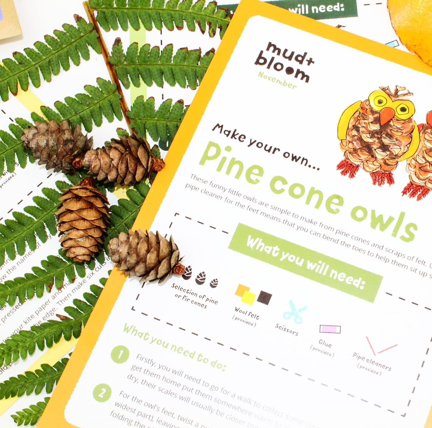 Mud & Bloom | A Nature-Friendly Subscription Box for Kids
